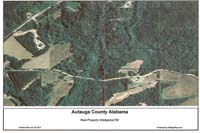 Autauga Co 20 acres B