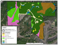 Walker Co. 288 acres Stand